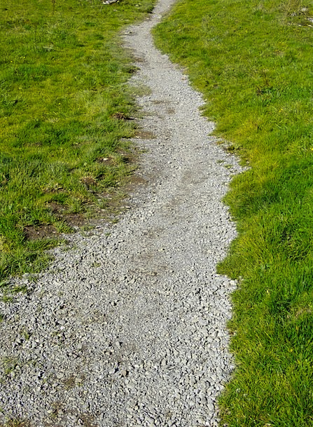 Trail Track Absent Path Away Migratory Path Mounta