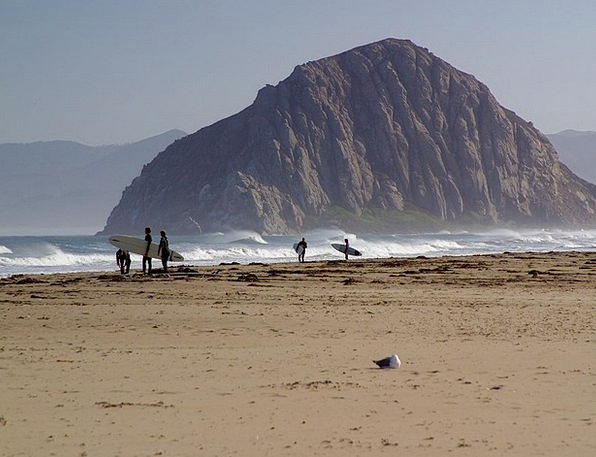 Morro Rock Sea Marine Surfer Rock Pillar Coast Sur