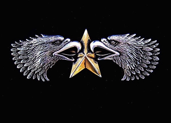 Emblem Sign Eagle Symbol Star Interstellar Bird Si