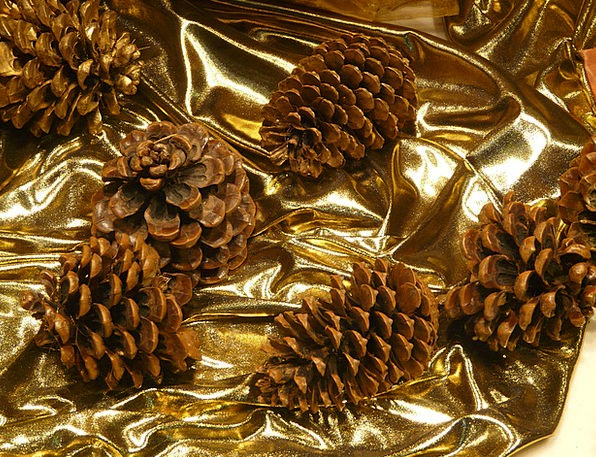 Pine Cones Beautification Christmas Decoration Win