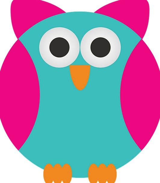 Sowa Fowl Wild Rough Bird Animals Birds Natures An