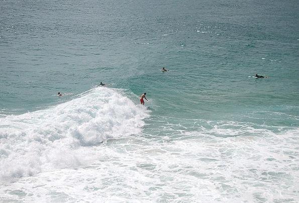 Surfer Vacation Travel Waves Surfs Surfing Sea Mar