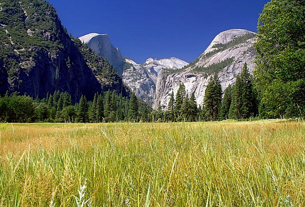 Yosemite National Park Landscapes Scenery Nature F