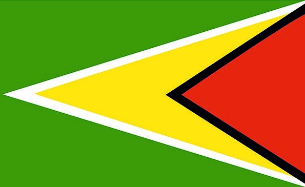 Guyana Standard Country Republic Flag Symbol Natio