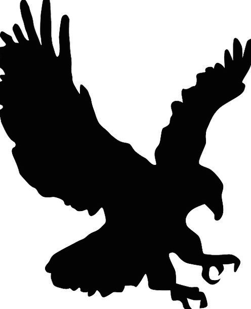 Hawk Warmonger Outline Eagle Silhouette Bald Eagle