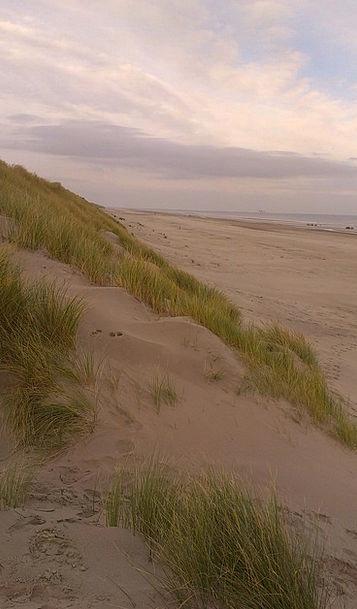 North Sea Vacation Bank Travel Stranddüne Dune Bea