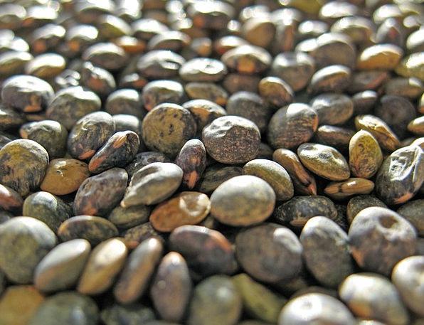 Lenses Drink Peas Food Erve Legumes Lens Culinaris