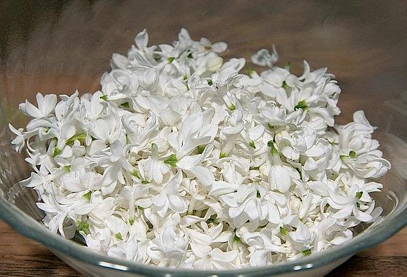 Fliederblueten Drink Mauve Food Flowers Plants Lil