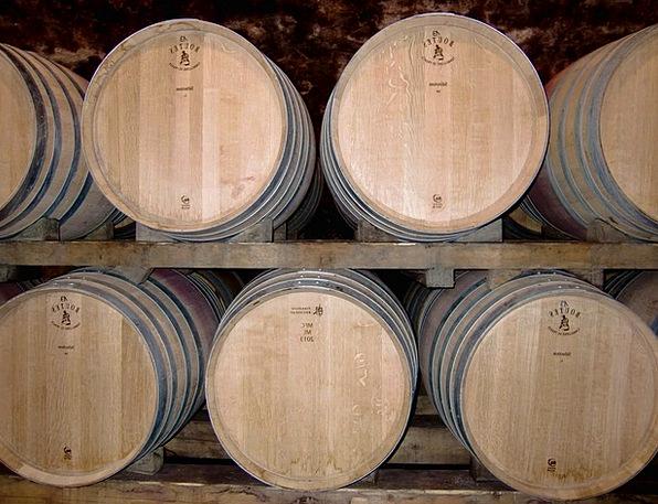 Cellar Basement Barrels Tubs Wine Barrels Wine Mau