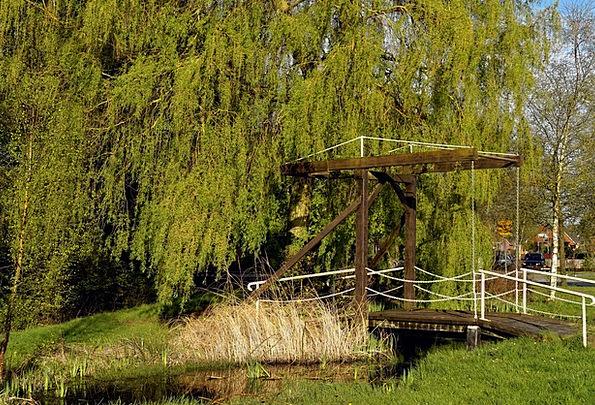 Wooden Bridge Change Hängeweide Transition Low Han