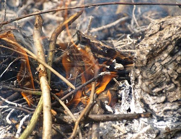 Fire Passion Cinders Ash Residue Embers Smoke Burn