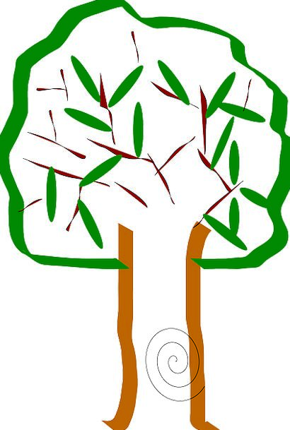 Tree Sapling Twigs Leaves Greeneries Branches Long