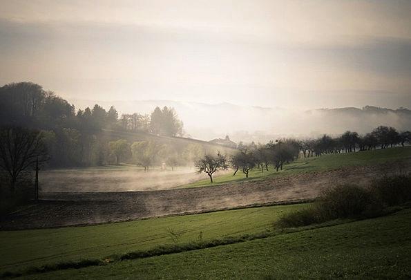 Fog Mist Landscapes Fall Nature Landscape Scenery