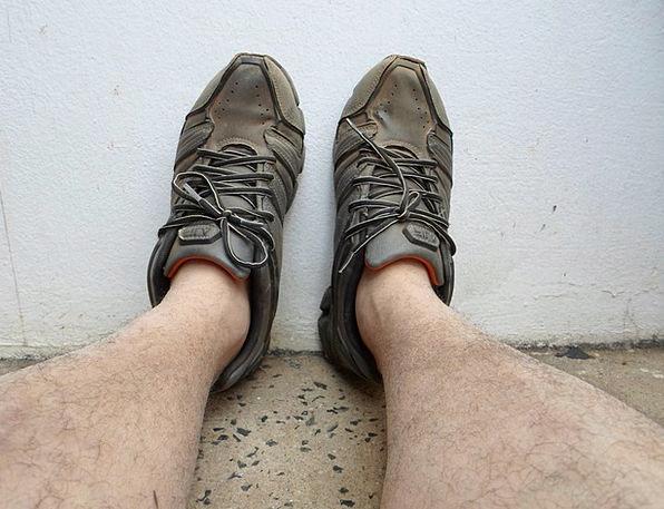 Shoes Bases Shoe Feet Leg Limb