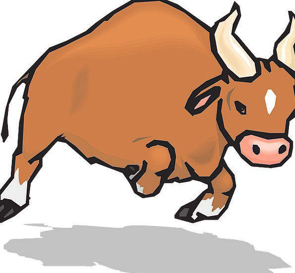Bull Decree Sirens Charging Accusing Horns Aggress
