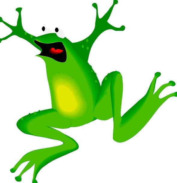 Frog Amphibian Face Jumping Hopping Free Vector Gr