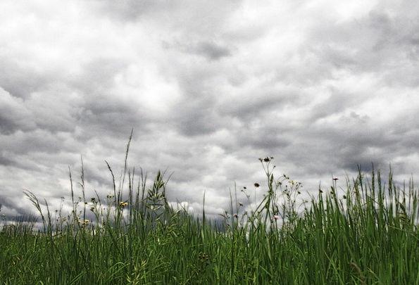 Clouds Vapors Landscapes Blue Nature Grass Lawn Sk