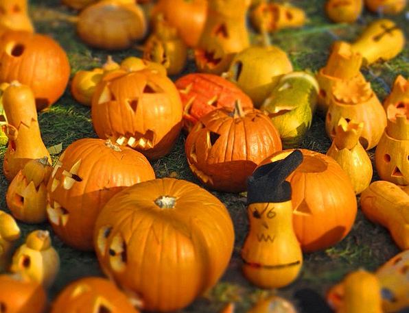 Pumpkin Creamy O-Lantern Yellow Halloween