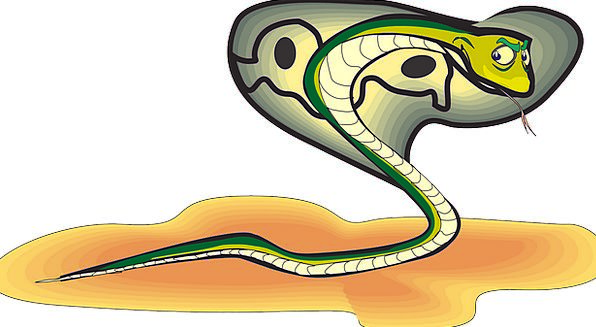 Head Skull Sand Shingle Snake Free Vector Graphics