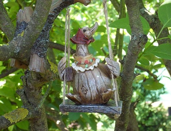 Garden Plot Sapling Fig Tree