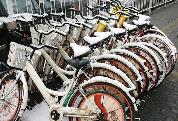 Bikes Motorbikes Cycle Series Bicycles Frozen Spor