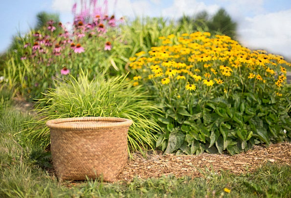 Basket Bag Landscapes Nature Wildflowers Weeds Con