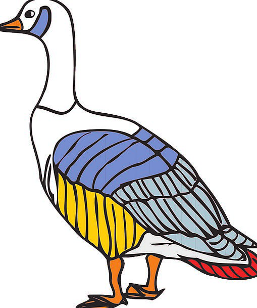 Bird Fowl Insignia Wings Annexes Colors Goose Colo