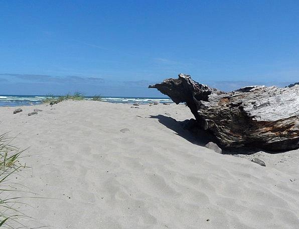 Beach Seashore Vacation Flotsam Travel Ocean View