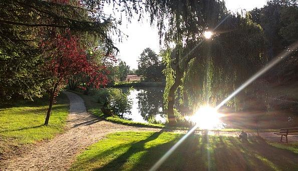Pond Pool Landscapes Understand Nature Landscape S
