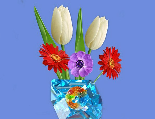 Turquoise Floret Blue Azure Flower