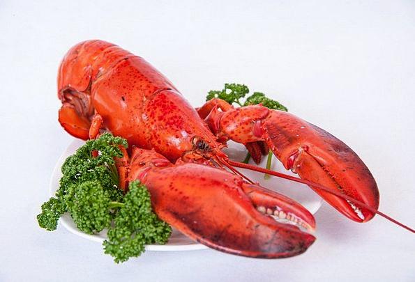 Shrimp Drink Nourishment Food Gauze Food Eating Ou