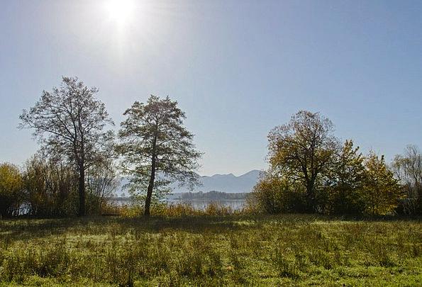 Back Light Taillight Landscapes Nature Landscape S