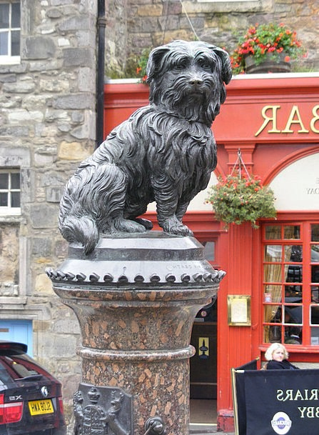 Dog Canine Figurine Edinburgh Statue City Scotland