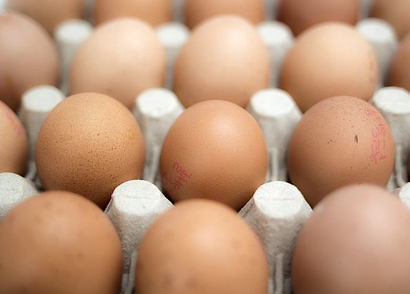 Eggs Spawns Drink Nourishment Food Fresh New Food