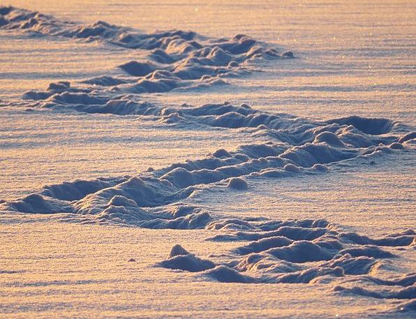 Snow Lane Suggestions Snow Snowflake Traces Zig Za