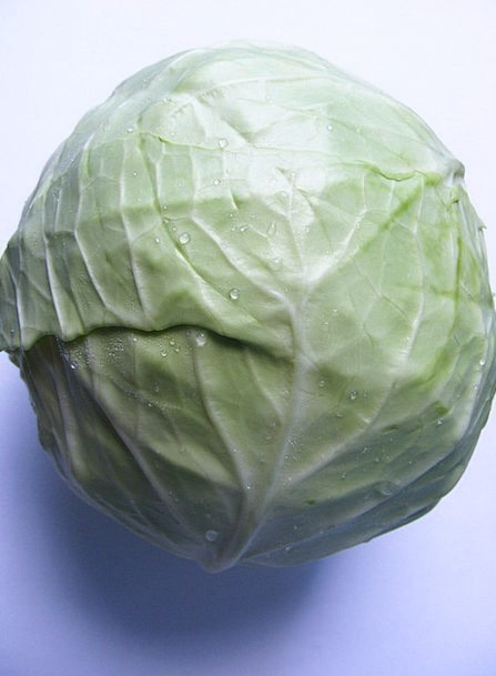 Anticancer Cabbage Antioxidant Sulforaphane Vitami