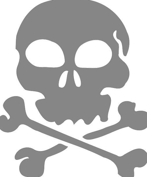 Skull Mind Frames Pirate Buccaneer Bones Free Vect
