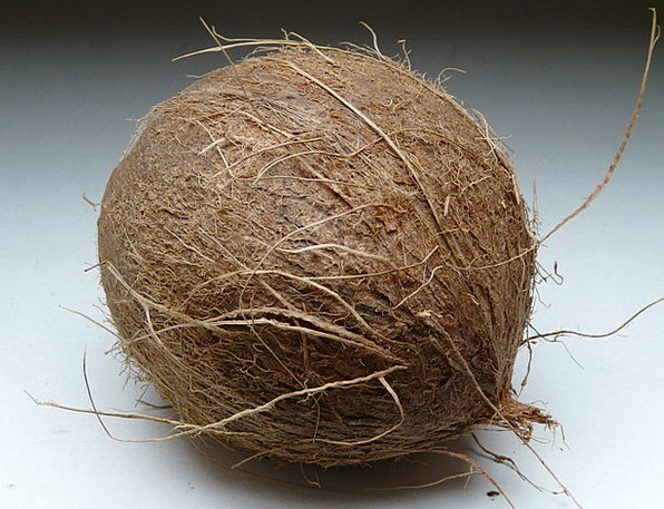 Coconut Drink Food Exotic Unusual Coconuts Coconut