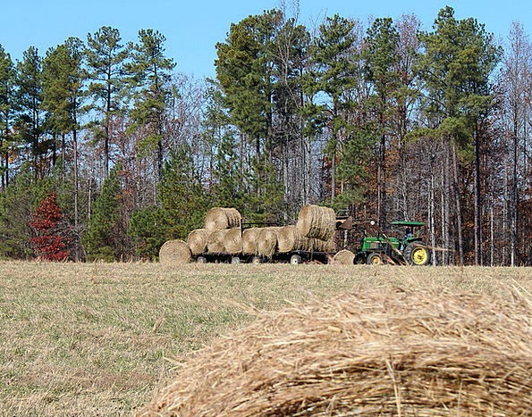 Farming Undeveloped Hay Wagon Making Hay Tractor H