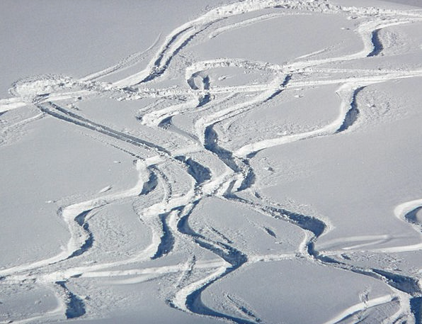 Skiing Landscapes Leaving Nature Wag Wiggle Depart