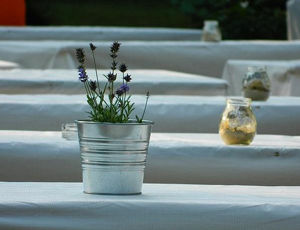 Pot Vessel Urn Lavender Violet Vase Flower Floret