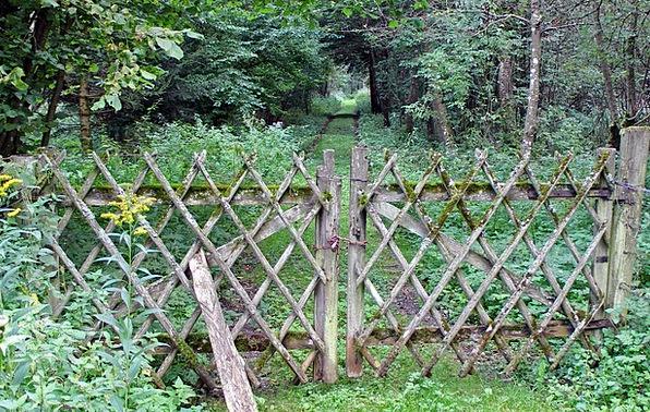 Fence Barrier Battens Boards Wood Fence Weave Limi