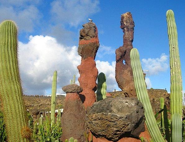 Spain Cactus Garden Lanzarote Places Of Interest T