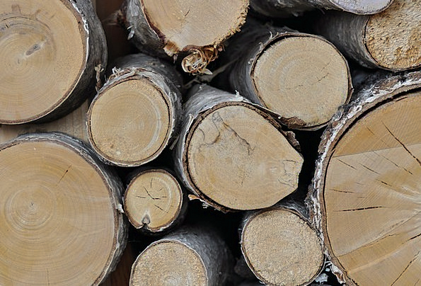 Wood Timber Landscapes Countryside Nature Dry Thir