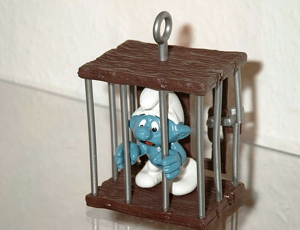 Smurf Wedged Prison Custodial Caught Included Comp