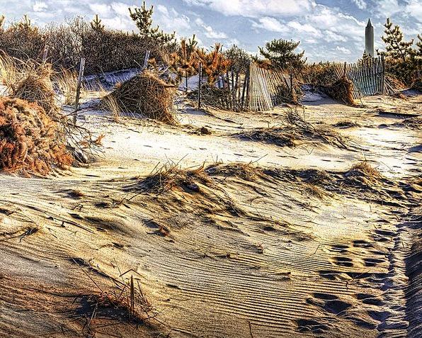 Dunes Banks Vacation Seashore Travel Sand Shingle