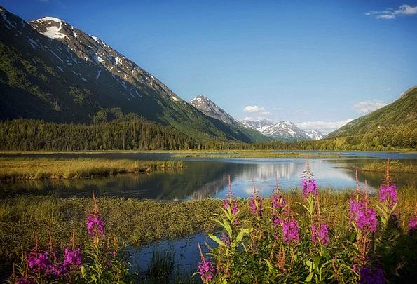 Alaska Landscapes Freshwater Nature Water Aquatic