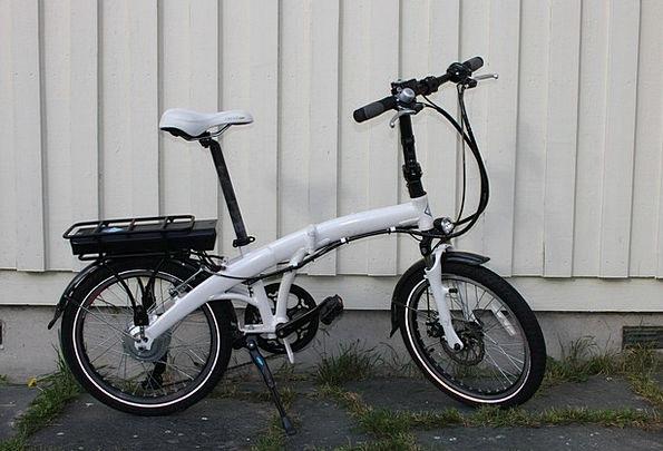 Foldable 250W Electric Bike