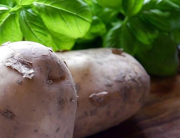 Potatoes Vegetables Drink Plant Food Food Nourishm