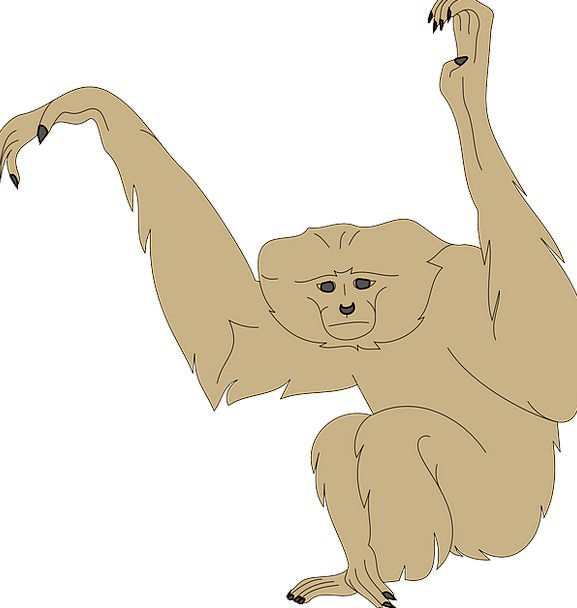 Monkey Ape Expression Arms Weapons Face Raised Ele